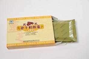 Grzyb i zarodniki Ganoderma lucidum (REISHI)